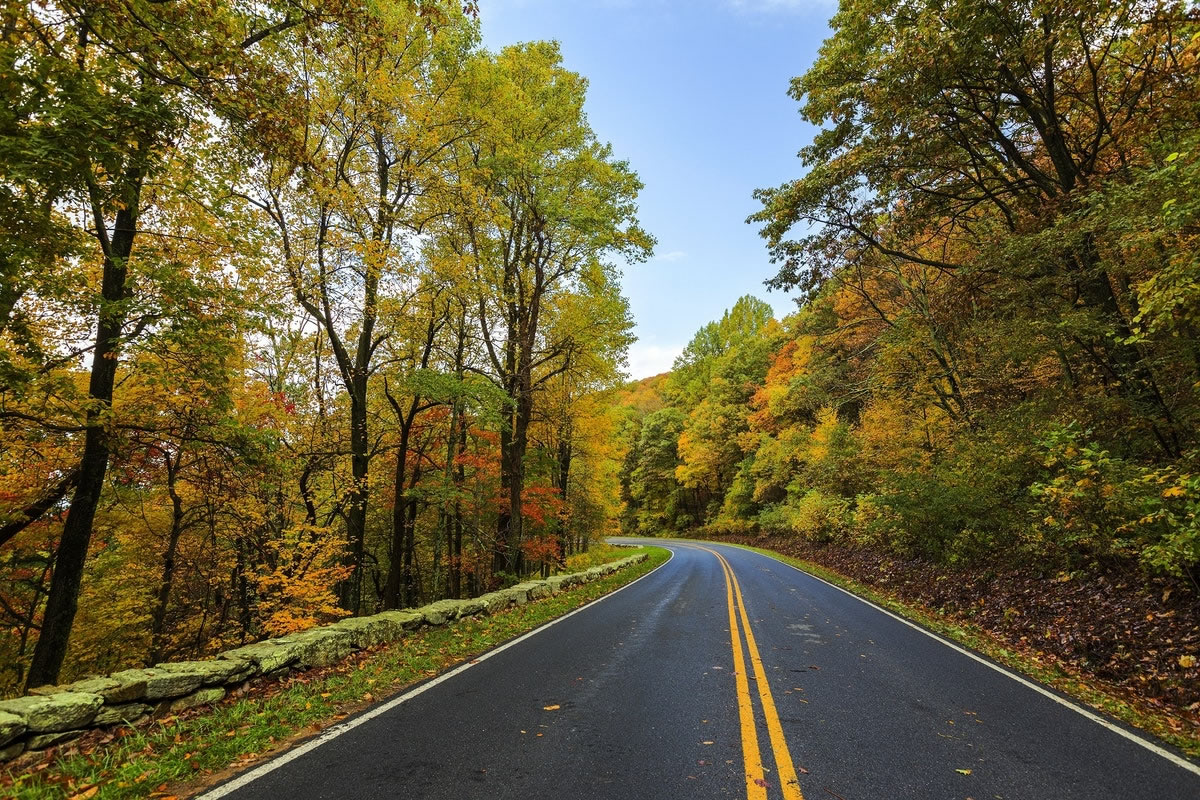 What You Should Know about Asphalt